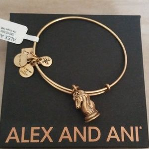 New Alex and Ani The Knight Chess Charity Energy